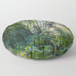Sun Rays in a Forest Floor Pillow