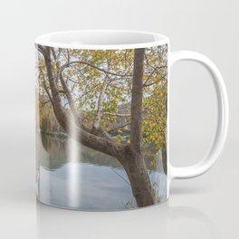 Beautiful Tennessee Fall Coffee Mug