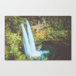 double waterfall in paradise Canvas Print