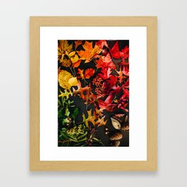 Colors of Fall Framed Art Print