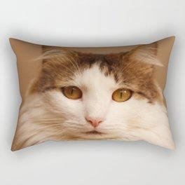 Ragamuffin Cat Portrait Rectangular Pillow