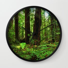 A Glimpse of the Redwoods. Wall Clock