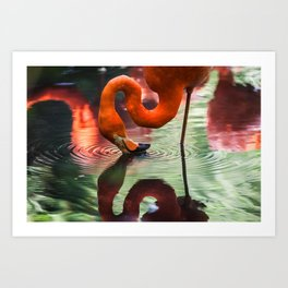 Tropical Flamingo Kiss Art Print