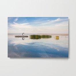 Haapslau and Baltic sea Metal Print