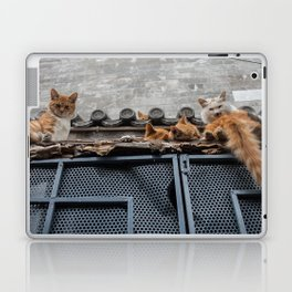 A Bunch of Cats Laptop & iPad Skin