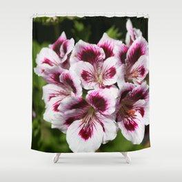 Purple Geraniums Flowers Shower Curtain