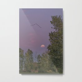 Going Back Home at Dusk Metal Print