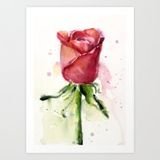 Rose Watercolor Red Flower Painting Floral Flowers Art Print