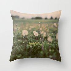 Forgotten Wishes Throw Pillow