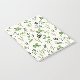 Delicate Herb Illustrations Notebook