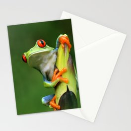 Curious Red-Eyed Tree Frog Stationery Cards