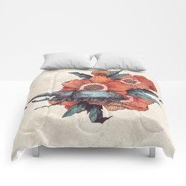 Hercules Beetle Comforters
