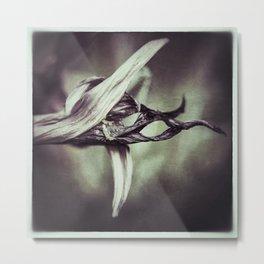 Hemerocallis Stamen Macro Metal Print
