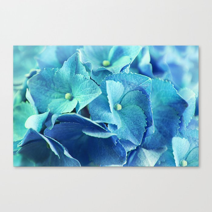 summerfeeling Canvas Print
