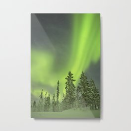 Aurora borealis over snowy trees in winter, Finnish Lapland Metal Print