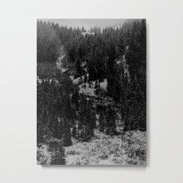 Untitled IV Metal Print