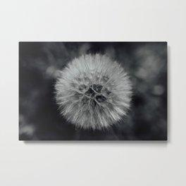 Fluffy Dandelion Metal Print