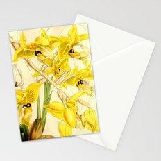 Stanhopea wardii Stationery Cards