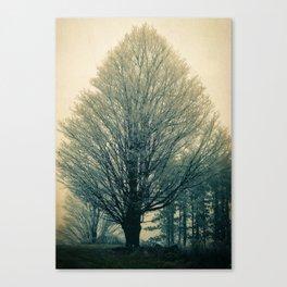 Individuality Canvas Print