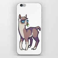 llama iPhone & iPod Skins featuring Llama by Suzanne Annaars