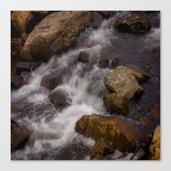 The Babbling Brooke Canvas Print