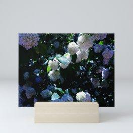 Blue Snowballs II Mini Art Print