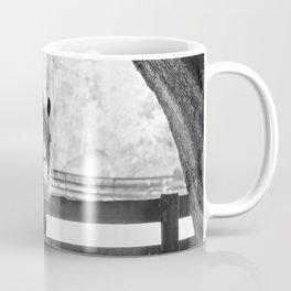 Gypsy Vanner Beauty Coffee Mug