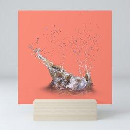 Splash from Indian Creek on the Sac & Fox Trail Mini Art Print
