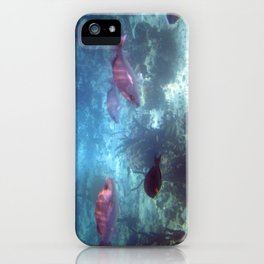 Bahamas Fish iPhone Case