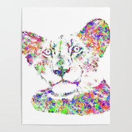 A lion cub Poster