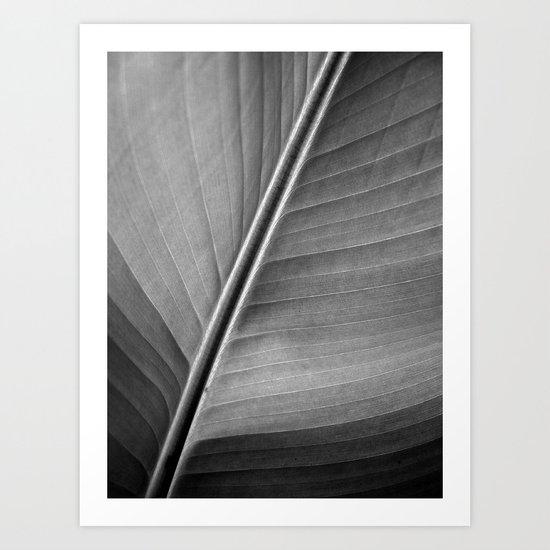 nature structure II Art Print