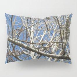 Crisp Cold Florida Morning Pillow Sham