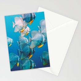 Huge Batfish School Stationery Cards
