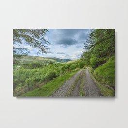 Green Lane Metal Print