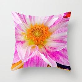 Dahlia Mix Throw Pillow