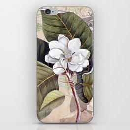 Vintage White Magnolia iPhone Skin