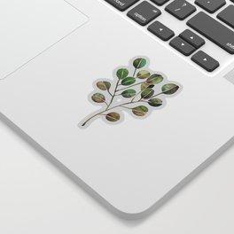 Silver Dollar Eucalyptus – Green Palette Sticker