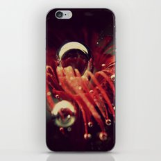 Secret Garden under Water iPhone & iPod Skin