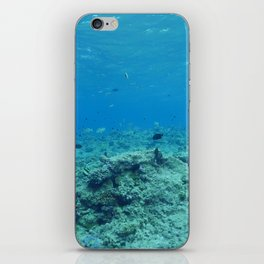 Visibility iPhone Skin