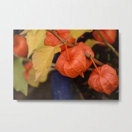 Autumn little jewels Metal Print