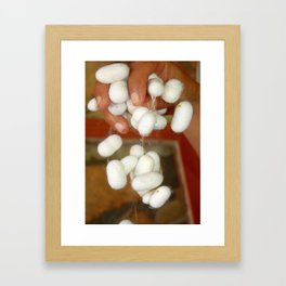 Mullberry Silkworm Cocoons Framed Art Print