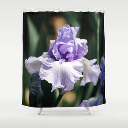 Lavender Iris Shower Curtain