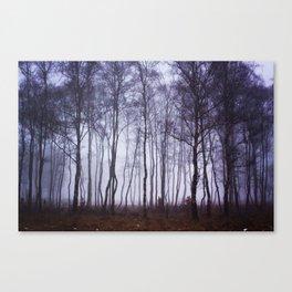 Fog through the Trees Canvas Print