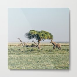Africa #society6 #decor #buyart Metal Print