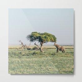Africa #society6 #decor #buyart Metal Print