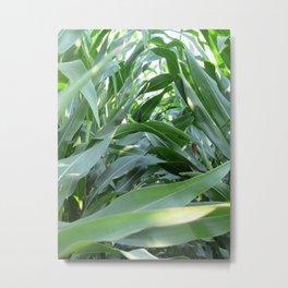 green summer Metal Print