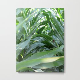green summer Metal Print