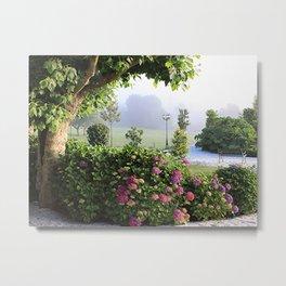 Hydrangea garden in mist, Arzua, Spain 2 Metal Print