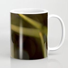 A beautiful bug Coffee Mug
