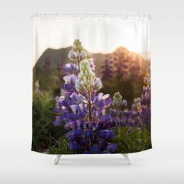 Mountain Lupine Photography Print Shower Curtain